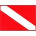 Trident Reflective 2 x 3 Inch Dive Flag Sticker