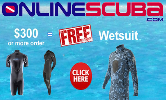 Free Wetsuit With Orders Over $300