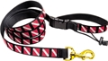 Innovative Dive Flag Medium Length Pet Leash